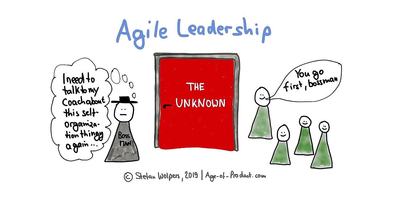 /agile-leadership-6y4223cib feature image