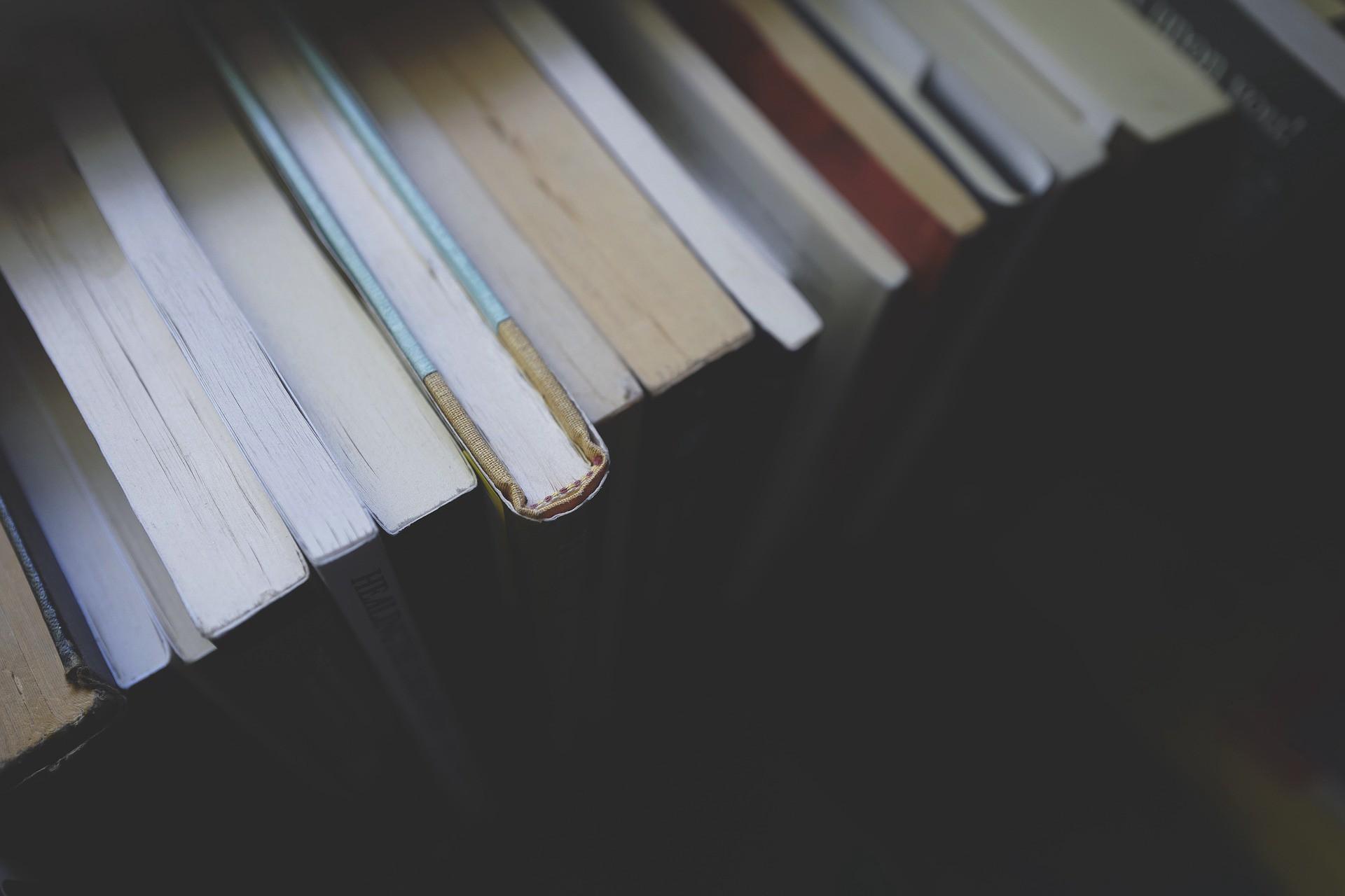 /5-books-every-founder-must-read-9e7fa03e6b5a feature image