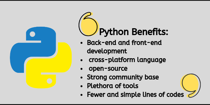 /what-is-python-used-for-an-exclusive-answer-1z2xo3xtf feature image