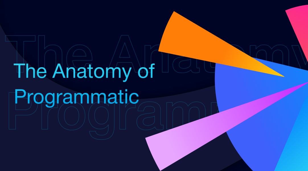 /the-anatomy-of-programmatic-advertising-infographic-ke3y329c feature image